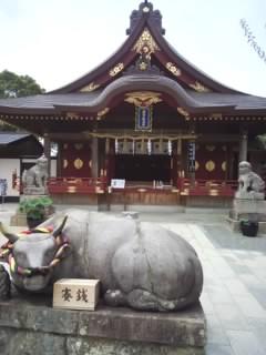 f:id:huton-takahara:20130625133500j:image