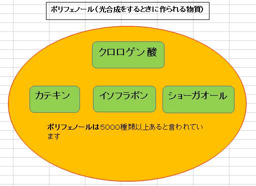 f:id:hutoparakasan2101:20190522214458p:plain