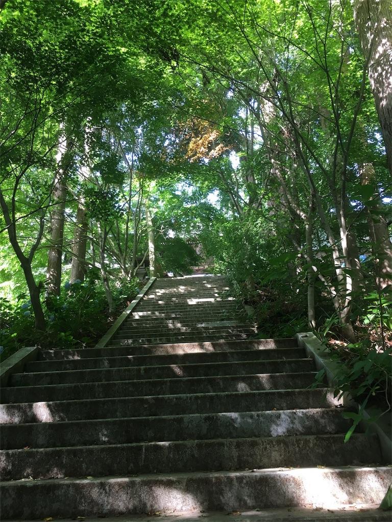 f:id:hututuka:20180709121213j:image