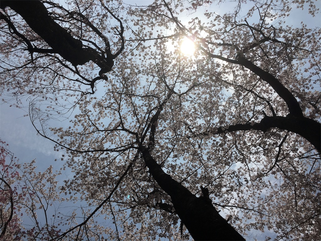 f:id:hututuka:20190420070945j:image