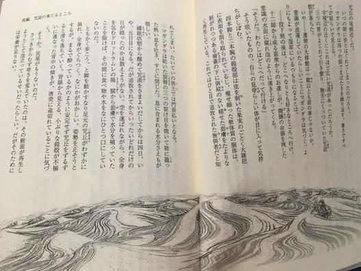 f:id:huyukiitoichi:20190501230917j:plain