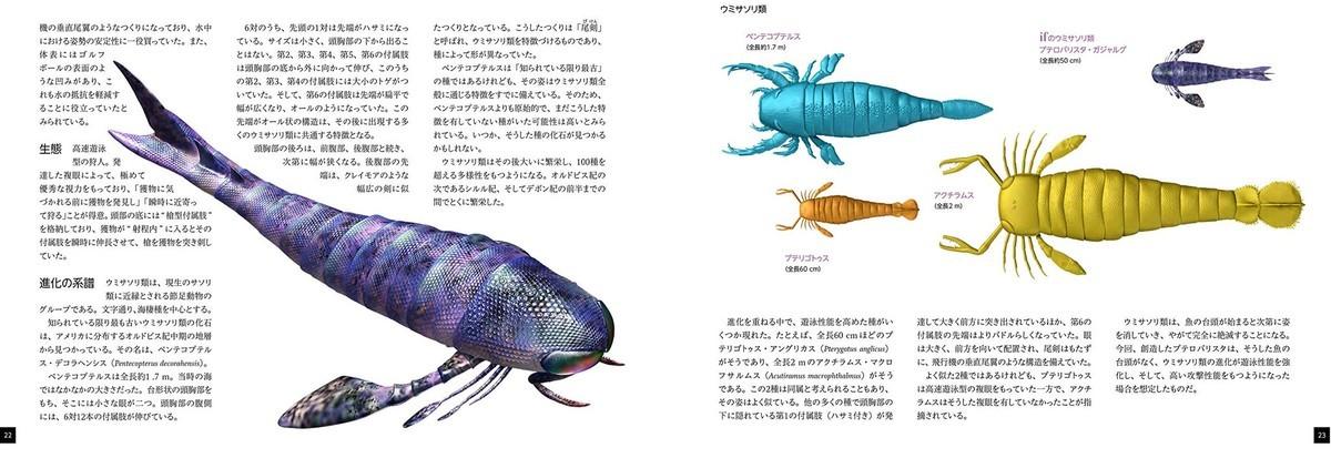 f:id:huyukiitoichi:20210214210520j:plain