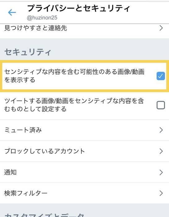 ブラウザ版の時のプライバシーとセキュリティ-の項目のセンシティブな内容を含む可能性のある画像/動画を表示するにチェックを入れる