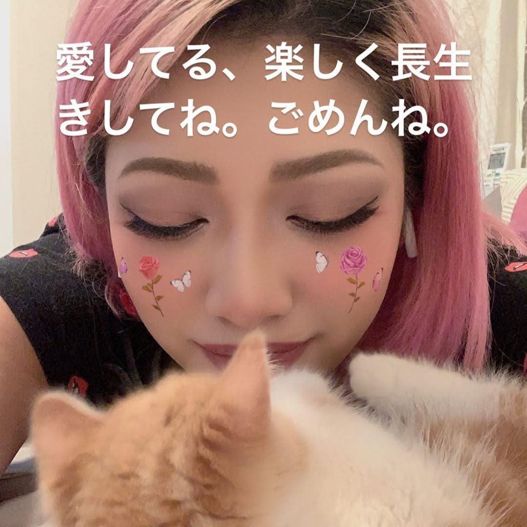 けんけん 誹謗中傷 「死に追いやってしまった」「逮捕されるのが怖い」 木村花さん誹謗中傷