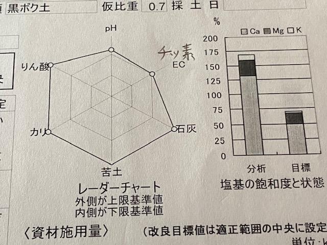 f:id:hyakusyoikki:20201121083551j:plain