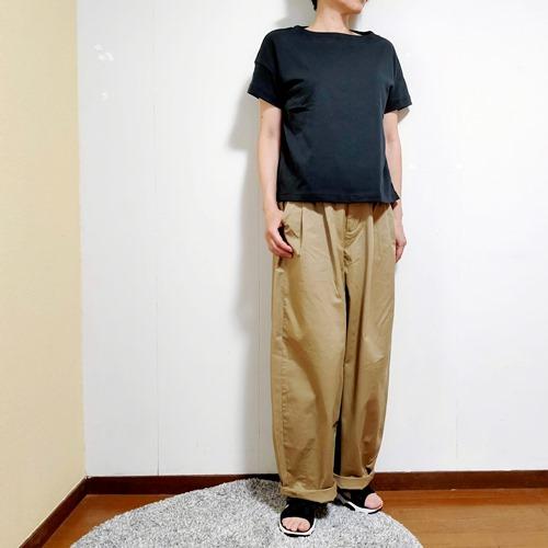 f:id:hyakuyou:20210726141403j:plain