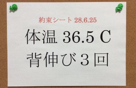 f:id:hyamasaki:20160627185233j:plain