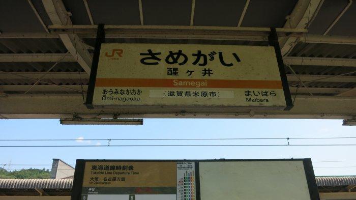 f:id:hyamasaki:20160803142232j:plain