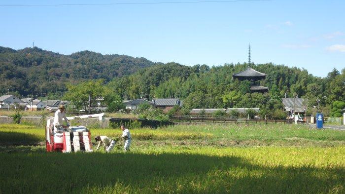 f:id:hyamasaki:20161011162907j:plain