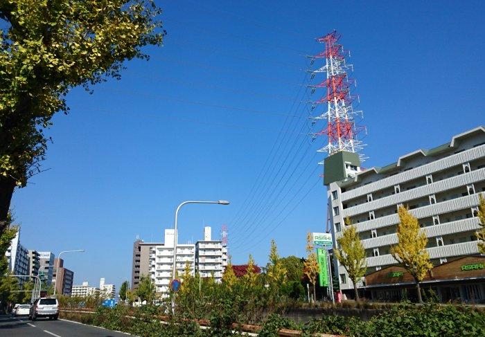 f:id:hyamasaki:20161112173741j:plain