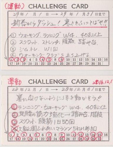 f:id:hyamasaki:20170109183926j:plain