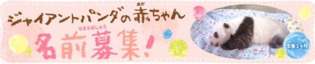 f:id:hyamasaki0101:20170802233816j:image