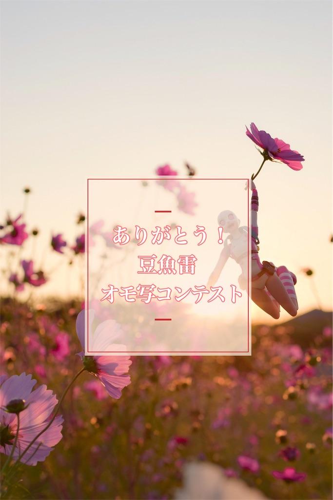 f:id:hyaruron_toy:20181119230906j:image