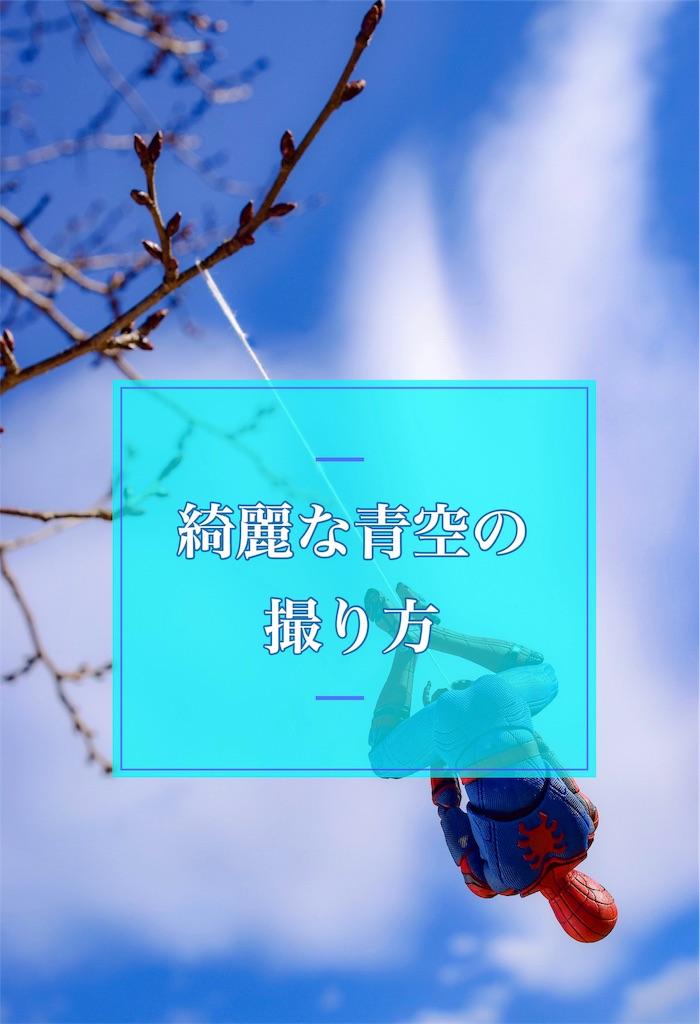 f:id:hyaruron_toy:20190122191703j:image