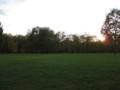 公園の日没