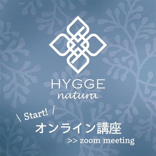 f:id:hyggenatura:20200512005155p:plain