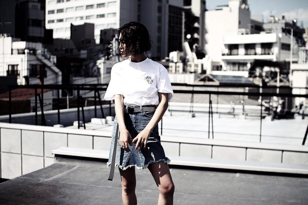 f:id:hynm_daisuke_endo:20170728213539j:plain