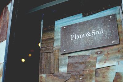 f:id:hynm_plant_soil:20170612181855j:plain