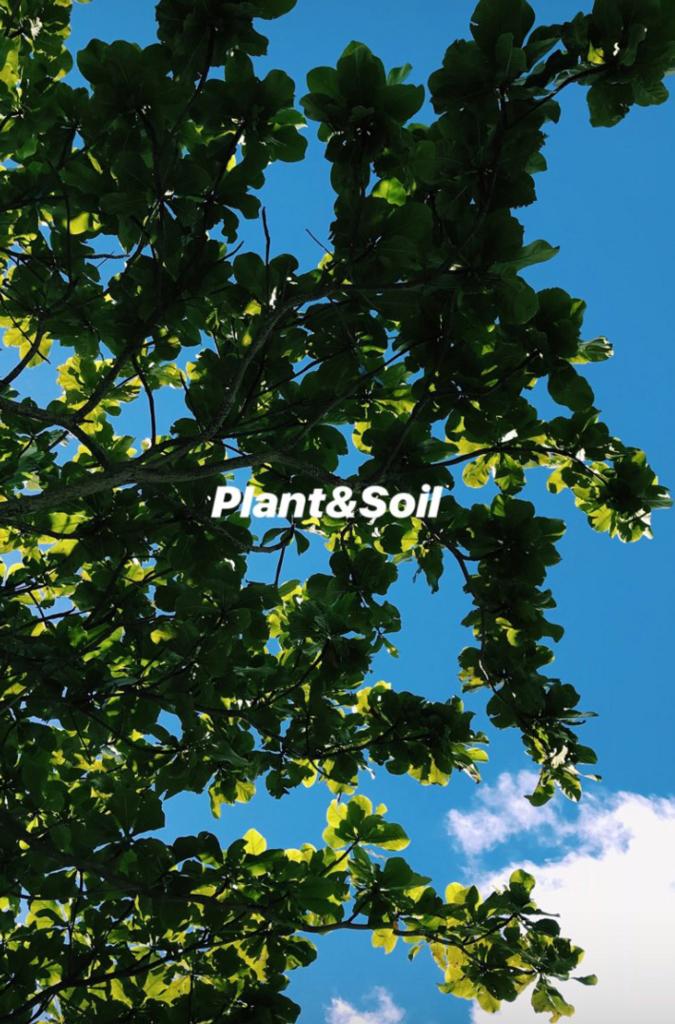 f:id:hynm_plant_soil:20180817162020j:plain
