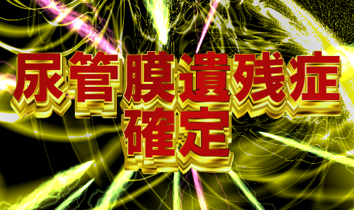 f:id:hyogokurumi:20180328221223p:plain