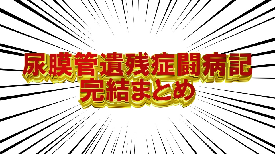 f:id:hyogokurumi:20180813200112j:plain