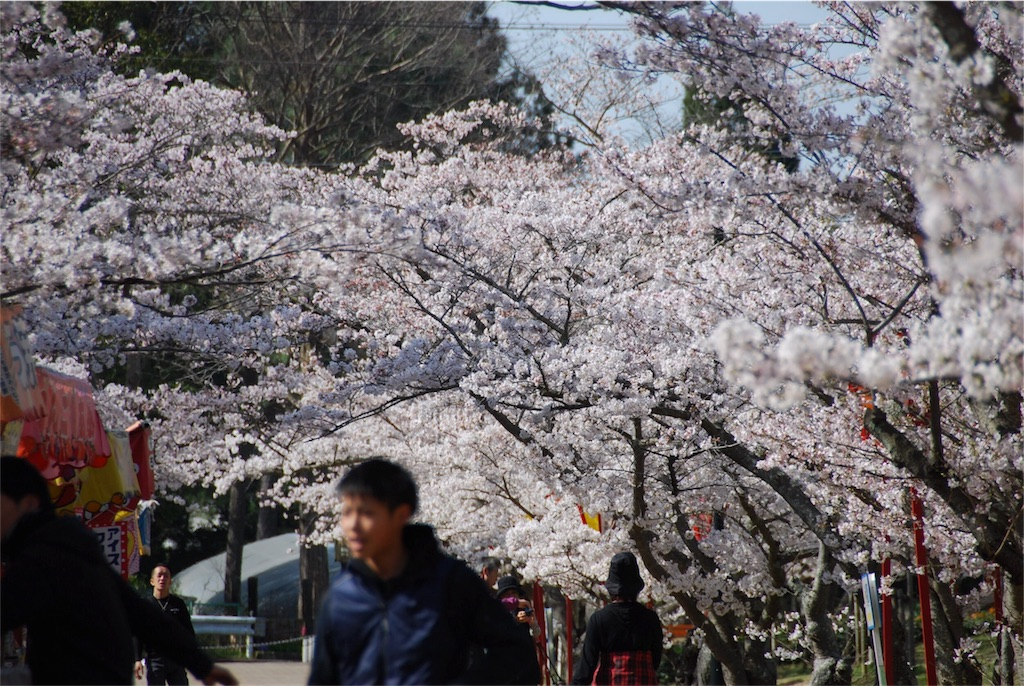 f:id:hyogonodaigakusei:20180330144401j:image