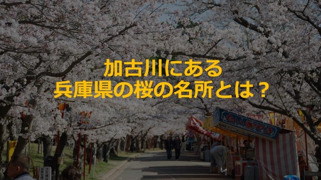 f:id:hyogonodaigakusei:20180330151802j:plain