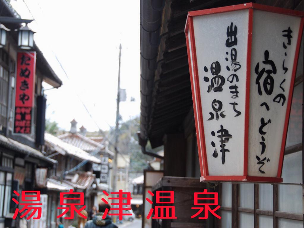 f:id:hyogonodaigakusei:20180330230633p:image