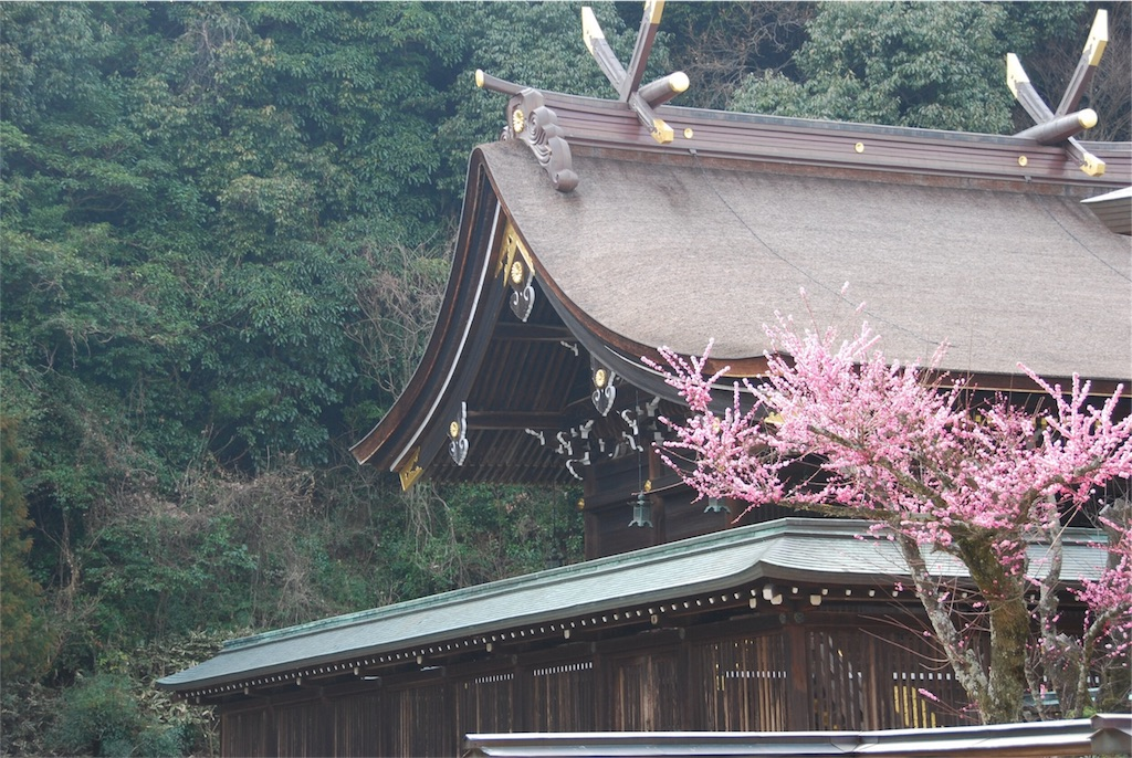 f:id:hyogonodaigakusei:20180406203238j:image