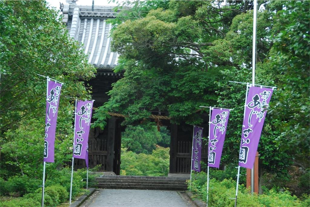 f:id:hyogonodaigakusei:20180625103524j:image