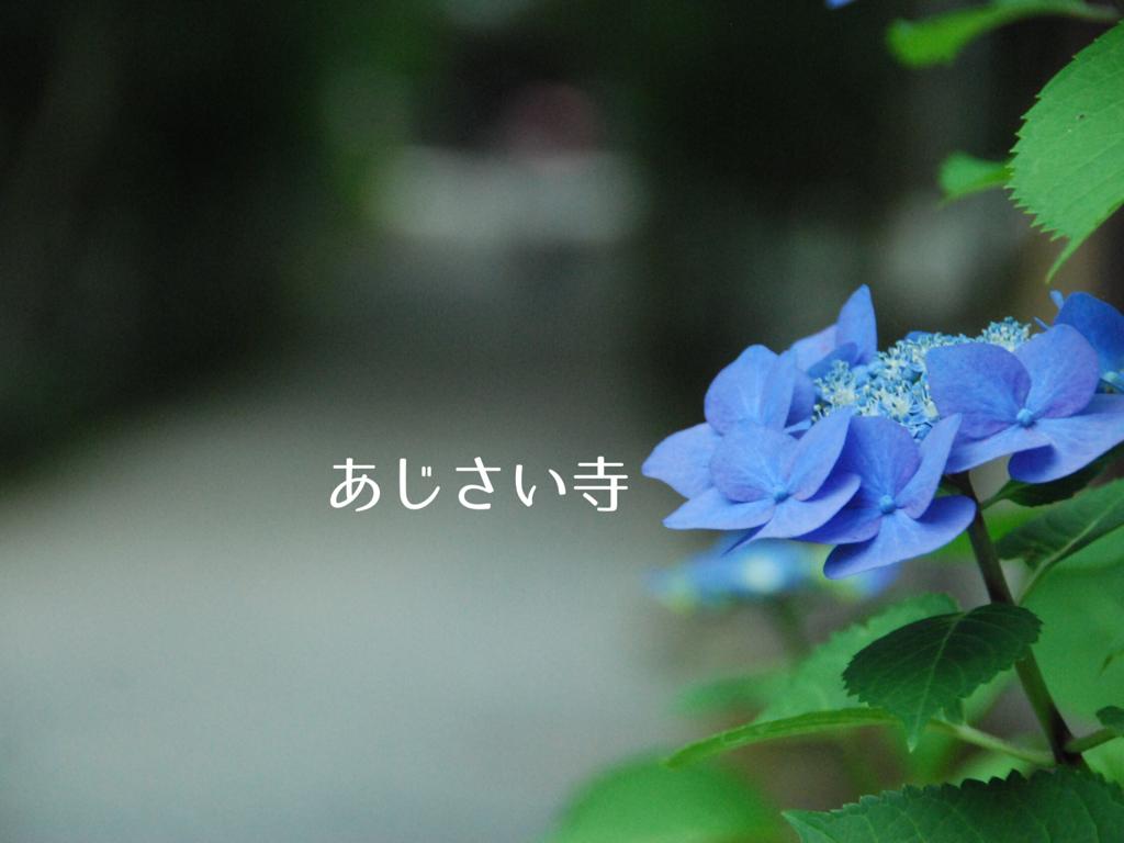 f:id:hyogonodaigakusei:20180625110738p:image