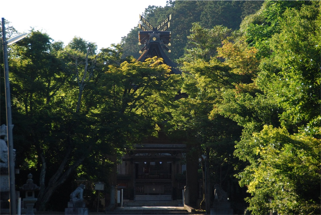 f:id:hyogonodaigakusei:20180729194800j:image