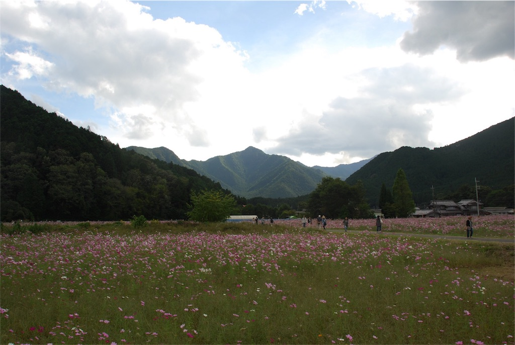 f:id:hyogonodaigakusei:20181014202718j:image