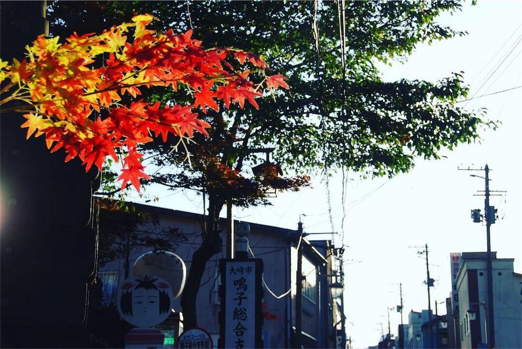 f:id:hyogonodaigakusei:20181111200946j:image