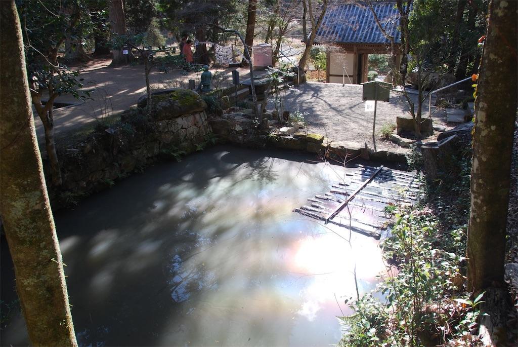 f:id:hyogonodaigakusei:20190113211337j:image