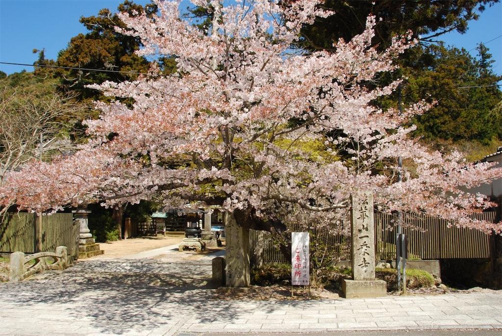 f:id:hyogonodaigakusei:20190414162547j:image