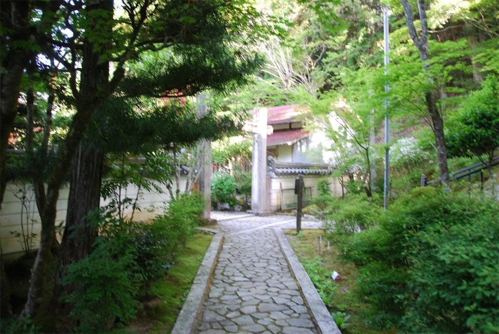 f:id:hyogonodaigakusei:20190519114626j:image