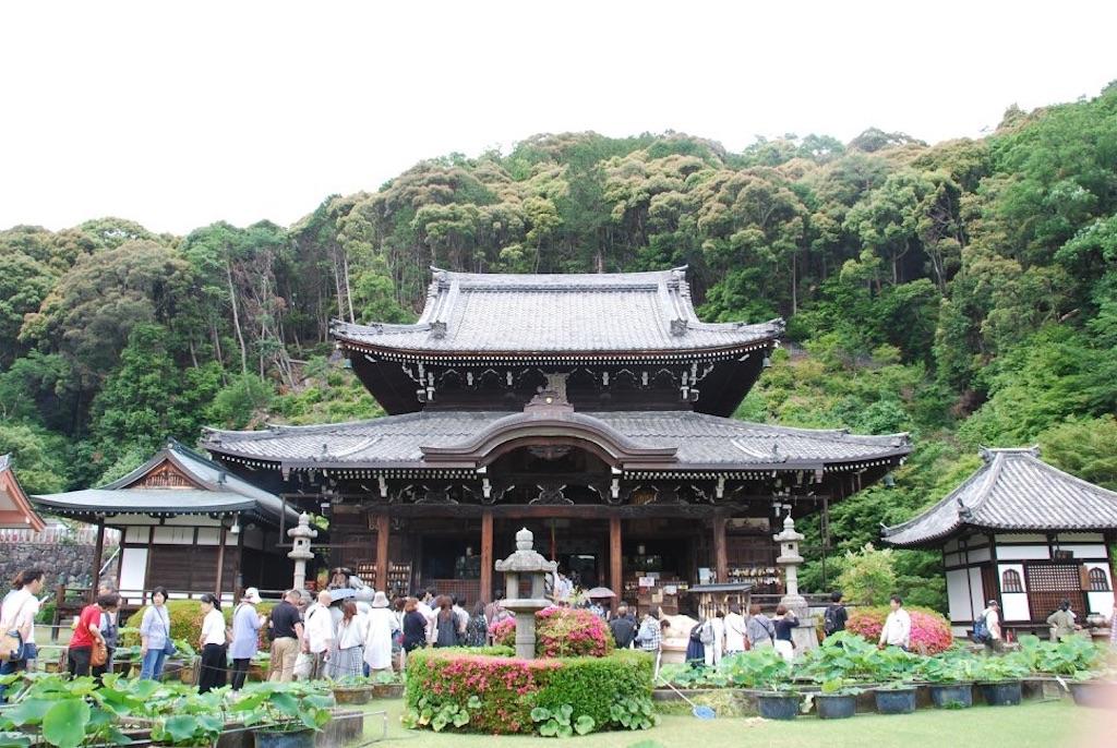 f:id:hyogonodaigakusei:20190611214548j:image