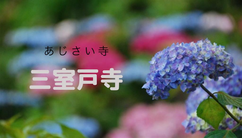 f:id:hyogonodaigakusei:20190611220946p:image