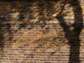 ロンドン レンガの壁と影の相性