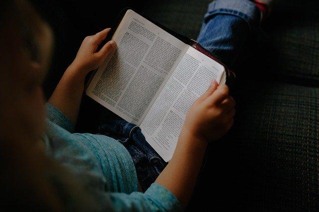 読書等からのインプットの効率が向上