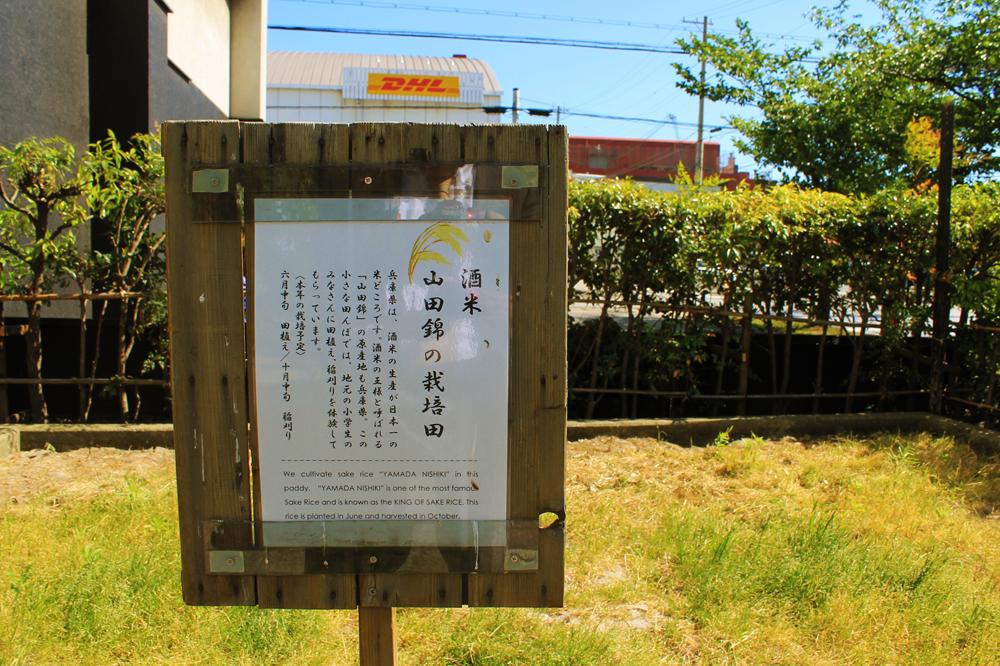 f:id:hyougonohanashi:20170926192119j:plain
