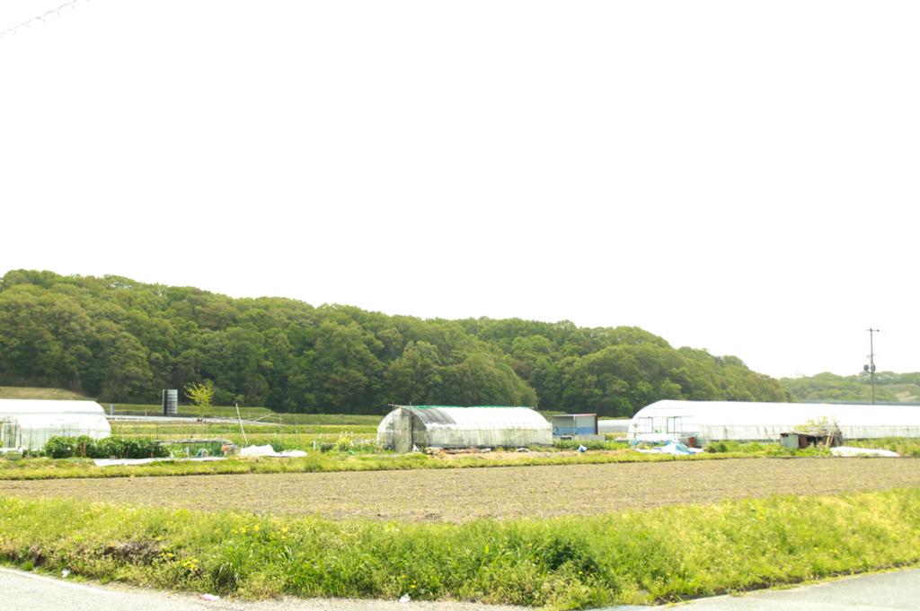f:id:hyougonohanashi:20180417010117j:plain