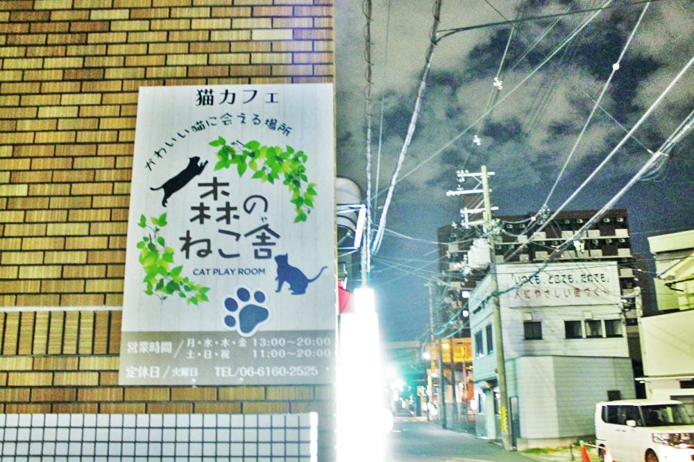 f:id:hyougonohanashi:20181124195903j:plain