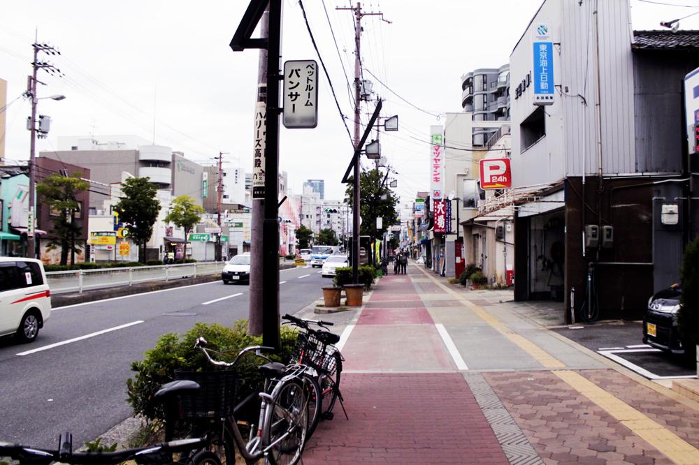f:id:hyougonohanashi:20190212012606j:plain