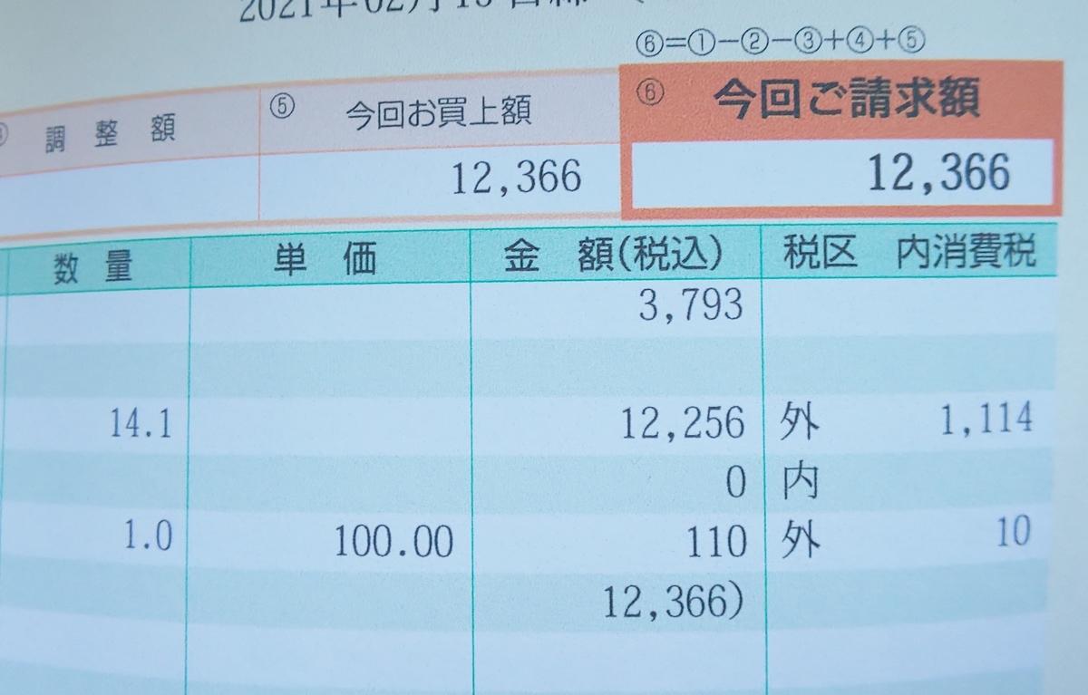 f:id:hyumama:20210222165349j:plain