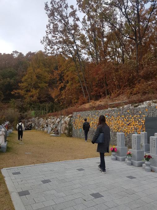 f:id:hyun_nako:20191220162218p:plain