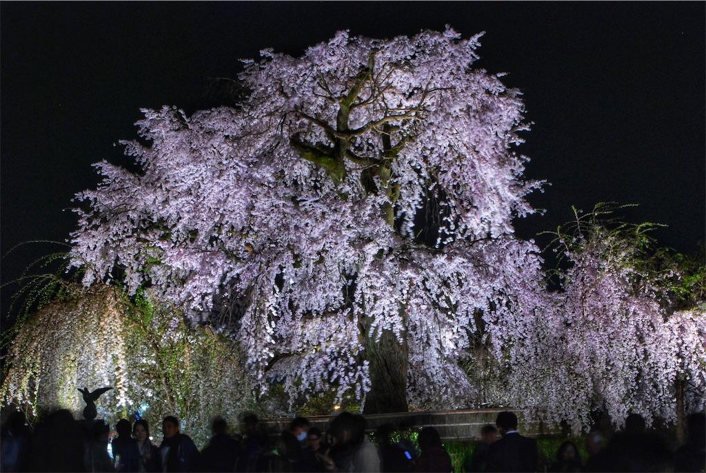 f:id:i-kazu-2530-0212dansya:20190113153008j:image