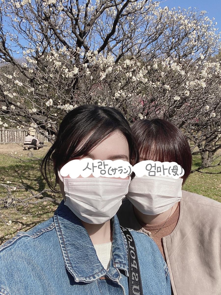 f:id:i-love-korea:20210228111514j:plain