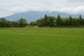 鳥海山(2236M)_山形県酒田市本楯新田